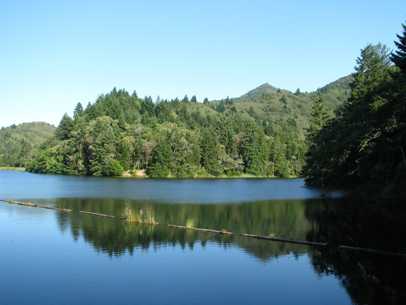 Mt tam fishing brings a welcome respite and sometimes for Bon tempe lake fishing