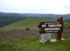 Mt. Tamalpais Watershed