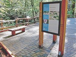 Leo T. Cronin Fish Viewing Area