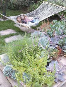 Share your Bay-Friendly garden