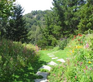 Bay-Friendly Garden Tour