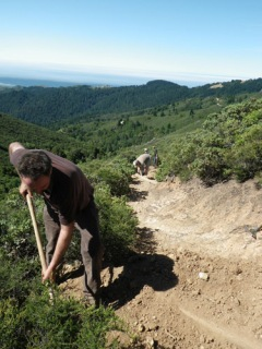 Volunteers on the Mt. Tamalpais Watershed