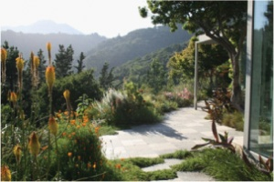 Marin-Friendly garden