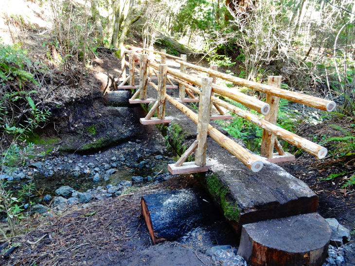 New footbridge improves trail system and protects creek for 50ft garden design