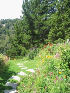 environmentally friendly garden with path and flowers