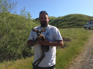 Darrel with fawn