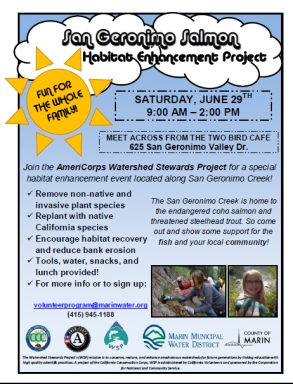 San Geronimo Salmon Habitat Enhancement Project flyer