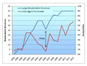 large woody debris vs salmon survival